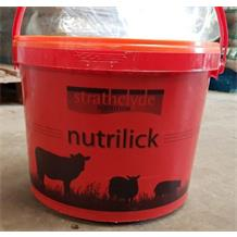 SHEEP MINERAL BUCKET G.P.